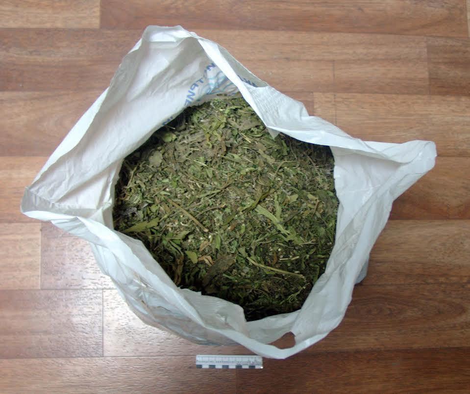 Томичу угрожает десять лет захранение марихуаны