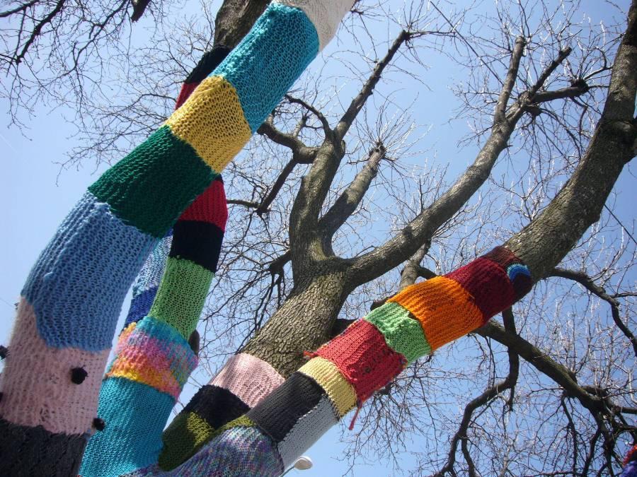 ВРыбинске деревья «оденут» вшарфики и рукавицы