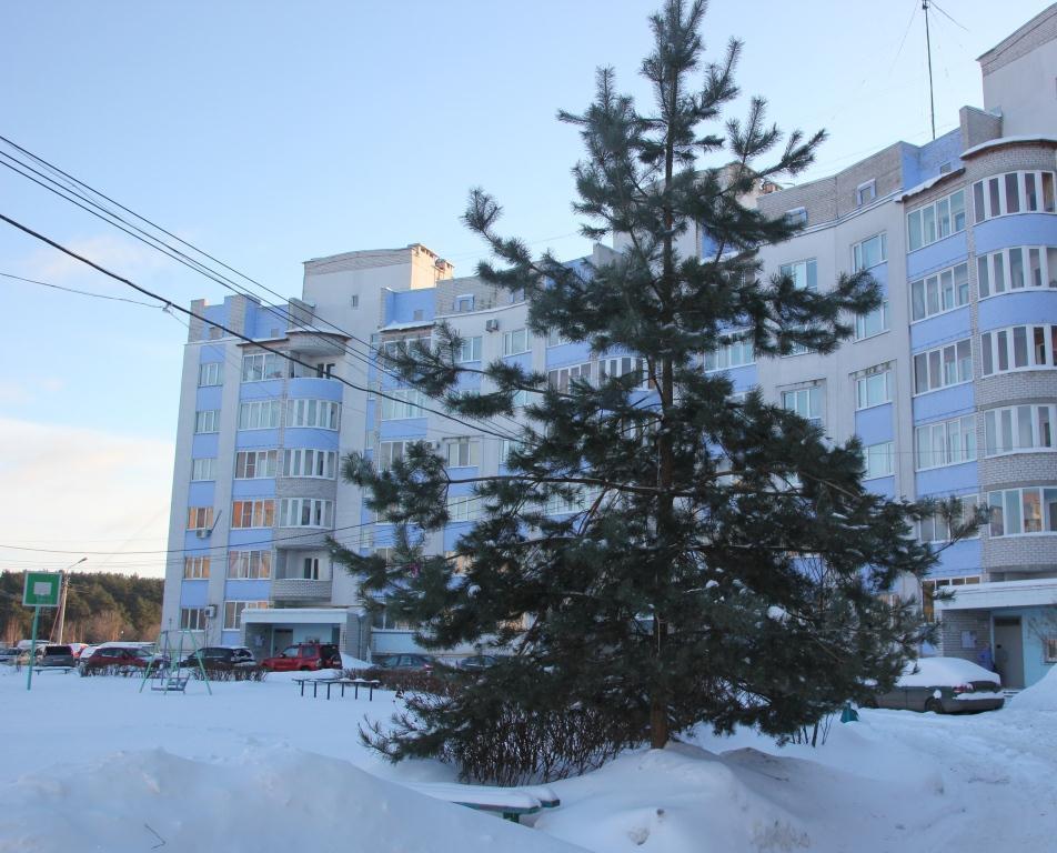 ВЯрославле стартовал конкурс налучшее новогоднее оформление