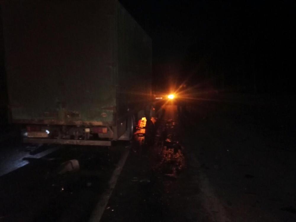 Вкрупном ДТП натрассе М-8 под Ростовом погибли 4 человека