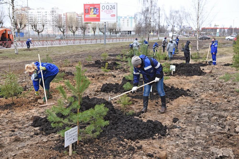 ВЯрославле участие всубботнике приняли неменее 47 тыс. человек