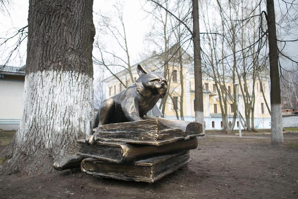 Максим котов ярославль